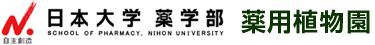 日本大学薬学部薬用植物園